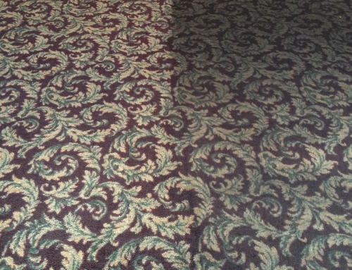 Commercial Carpet Cleaning | Before and After